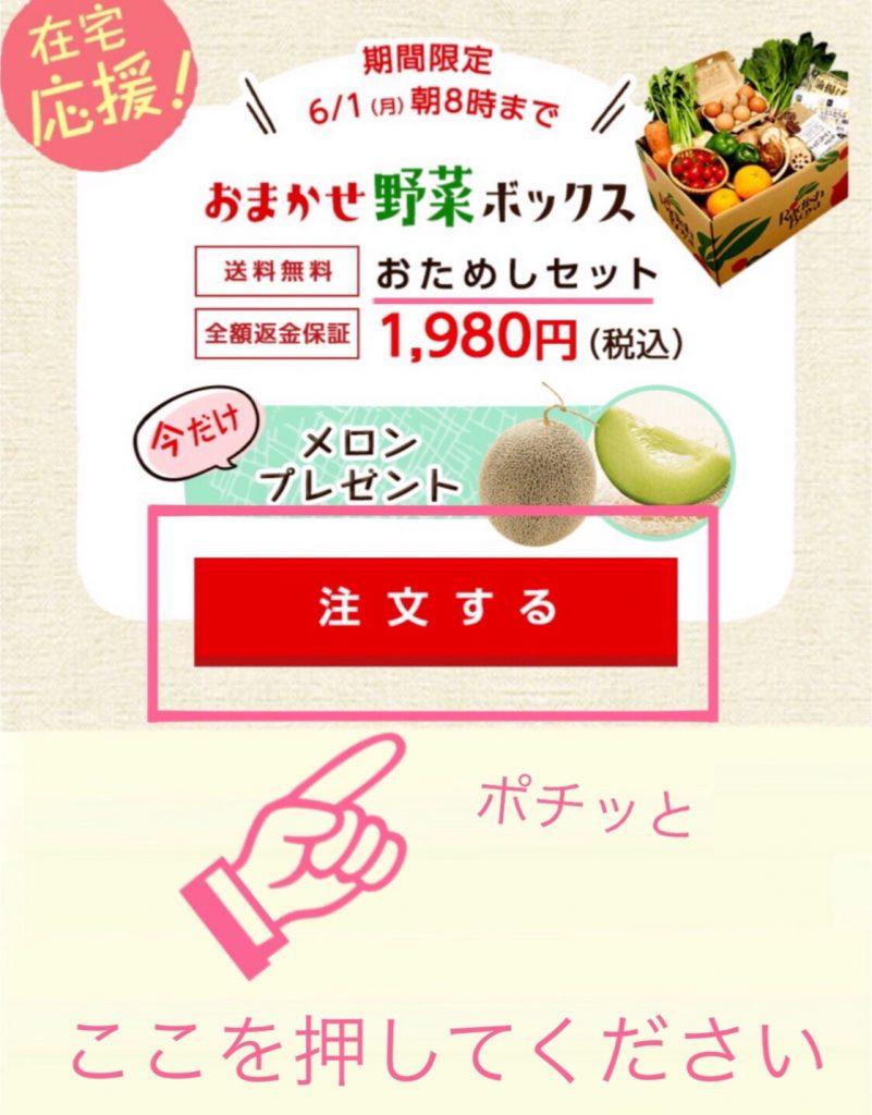 らでぃっしゅぼーやおためしセットの公式サイトの画面